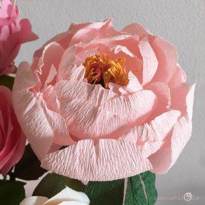 peonia coral supreme fiori di carta