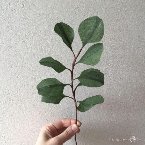 eucalipto silver dollar foglie di carta componi il tuo bouquet idee regalo