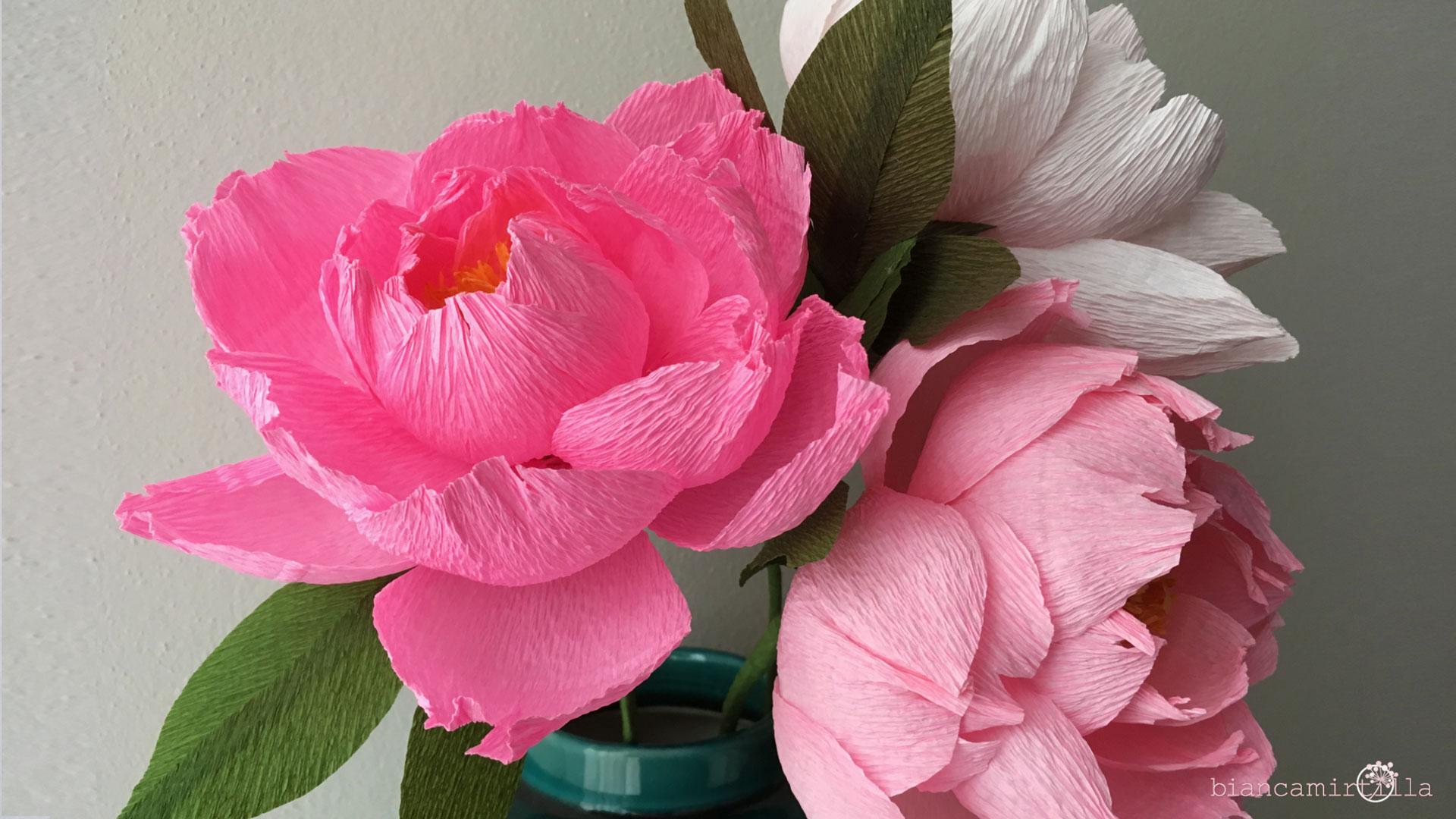 peonia supreme coral fiori di carta idee regalo