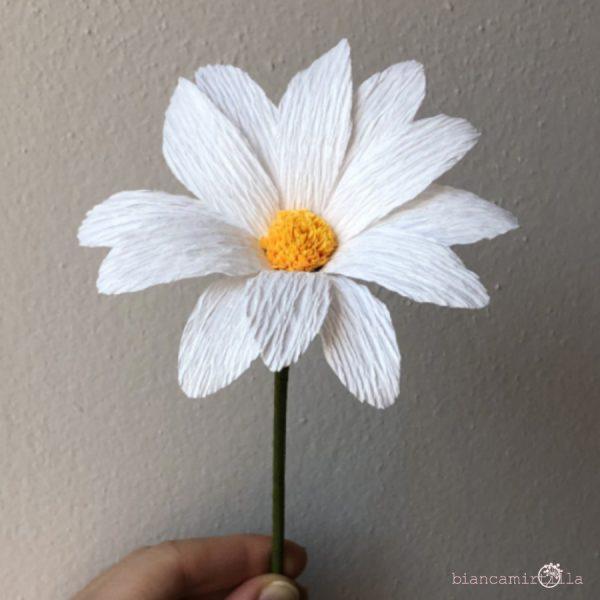 Margherite fiori di carta idee regalo componi il tuo bouquet